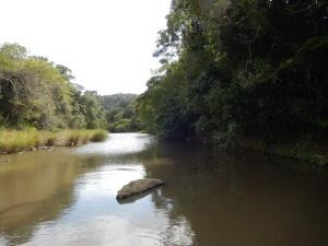 The river near Hobeni